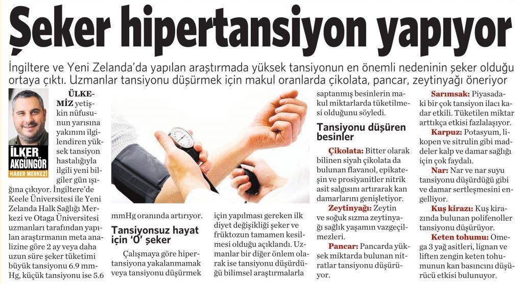 10 Ağustos 2016 Vatan Gazetesi 4. sayfa